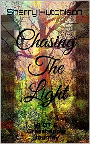 Chasing The Light: A CT & Grasshopper Journey